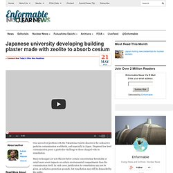 Japanese university developing building plaster made with zeolite to absorb cesium