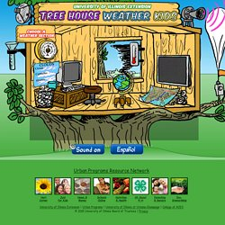 Tree House Weather Kids