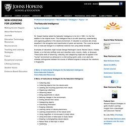 School of Education Johns Hopkins University The Naturalist Intelligence