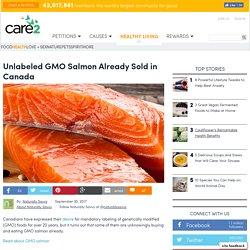 Unlabeled GMO Salmon Already Sold In Canada