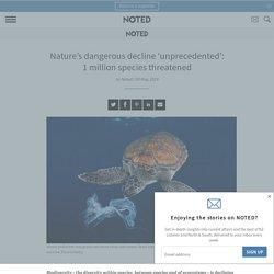 Nature's dangerous decline 'unprecedented': 1 million species threatened
