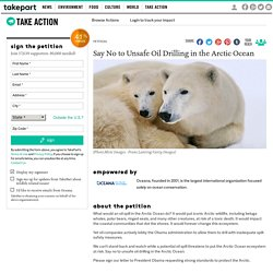 Say No to Unsafe Oil Drilling in the Arctic Ocean