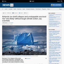 Antarctic ice shelf collapse and unstoppable sea level rise 'very likely' without tough climate action, say scientists - Science