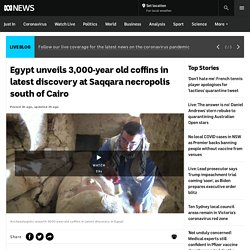Egypt unveils 3,000-year old coffins in latest discovery at Saqqara necropolis south of Cairo