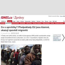 Co s uprchlíky? Předpoklady EU jsou klamné, ukazují zpovědi migrantů