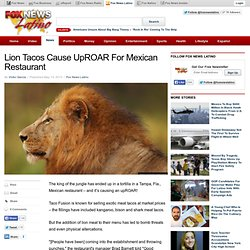 Lion Tacos Cause UpROAR For Mexican Restaurant