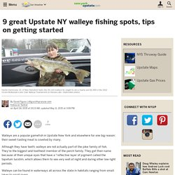 9 great Upstate NY walleye fishing spots, tips on getting started