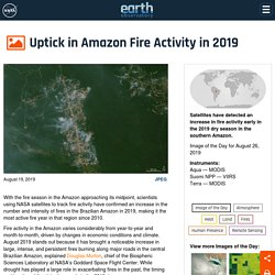 Uptick in Amazon Fire Activity in 2019