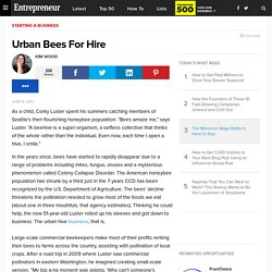 Urban Bees For Hire