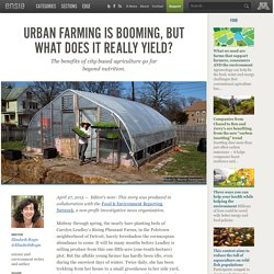 Urban farming is booming, but what does it really yield?