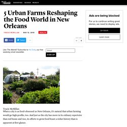 5 Urban Farms Reshaping the Food World in New Orleans