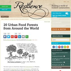 20 Urban Food Forests from Around the World