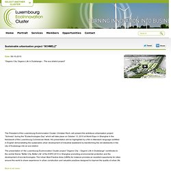 "Sustainable urbanisation project ""SCHMELZ"" / News / Luxembourg EcoInnovation Cluster"