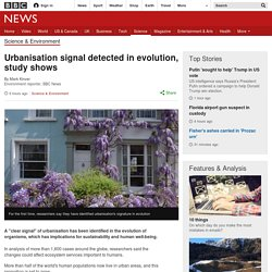 ***Urbanisation signal detected in evolution, study shows
