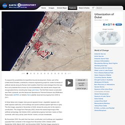 World of Change: Urbanization of Dubai : Feature Articles