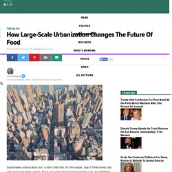 How Large-Scale Urbanization Changes The Future Of Food