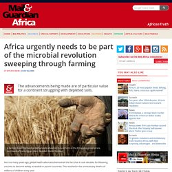 Africa urgently needs to be part of the microbial revolution sweeping through farming