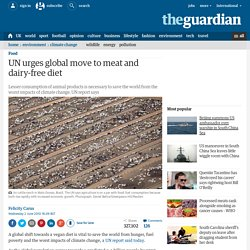 UN urges global move to meat and dairy-free diet