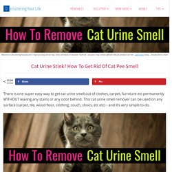 Cat Urine Stink? How To Get Rid Of Cat Pee Smell - Decluttering Your Life