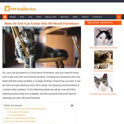 How to Get Cat Urine Out of Wood Furniture - The Pet Supply Guy