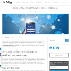 Quel usage professionnel pour Facebook - Pilot'in blog