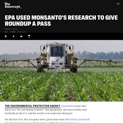 EPA Used Monsanto's Research to Give Roundup a Pass