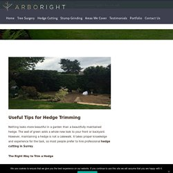 Useful Tips for Hedge Trimming