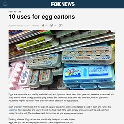 10 Uses For Egg Cartons