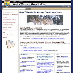 USFWS: Gray Wolf in the Western Great Lakes