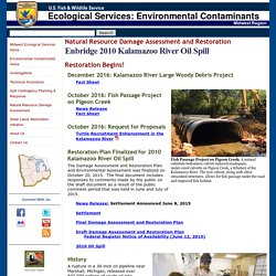 USFWS: NRDAR 2010 Michigan Enbridge Oil Spill