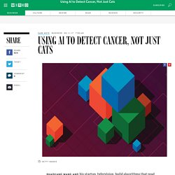 Using AI to Detect Cancer, Not Just Cats
