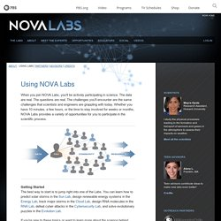 Using Labs