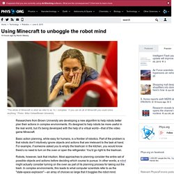 Using Minecraft to unboggle the robot mind