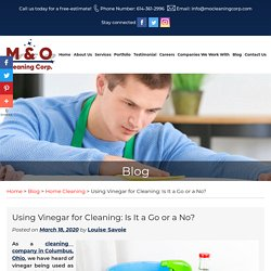 Using Vinegar for Cleaning: Is It a Go or a No?