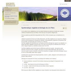 USRTL - Industrie Française du Lin