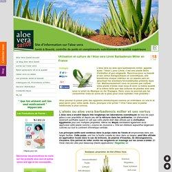Utilisation et culture de l'Aloe vera Linné Barbadensis Miller en France - Le meilleur du gel d'aloe vera bio I.A.S.C. et autres plantes pour votre Santé, Bien-être et Beauté avec LR