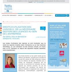 Droits d'utilisation des logiciels : de la nécessaire gestion des licences au sein de l'entreprise. Par Betty Sfez et Bénédicte Deleporte, Avocats.