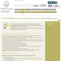 Droit d'utilisation de ressources et exception pédagogique