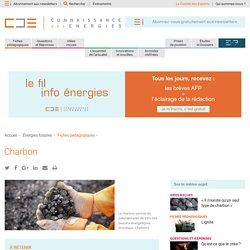 Charbon : formation, extraction, utilisation, pays producteurs et chiffres clés