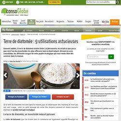Terre de diatomée : 9 utilisations astucieuses