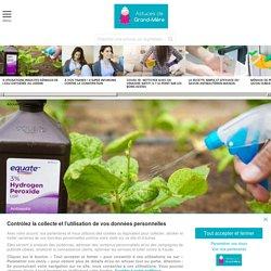 6 utilisations insolites géniales de l'eau oxygénée au jardin