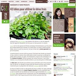 43 Idées pour utiliser le shiso frais