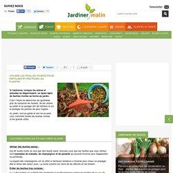 Utiliser les feuilles mortes pour fertiliser et protéger les plantes