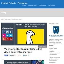 Meerkat : 4 façons d'utiliser le live vidéo pour votre marque
