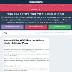 Comment Utiliser WP-CLI Pour Une Meilleure Gestion de Site WordPress
