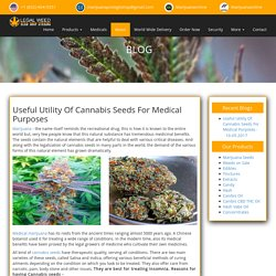 Useful Utility Of Cannabis Seeds For Medical Purposes