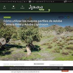 Cómo utilizar los nuevos perfiles de Adobe Camera RAW y Adobe Lightroom