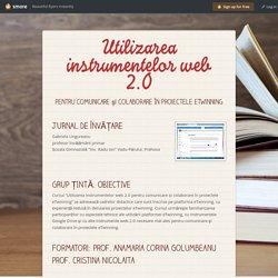 Utilizarea instrumentelor web 2.0