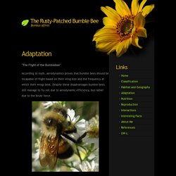 UWL Website