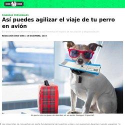 Vacaciones: Así puedes agilizar el viaje de tu perro en avión